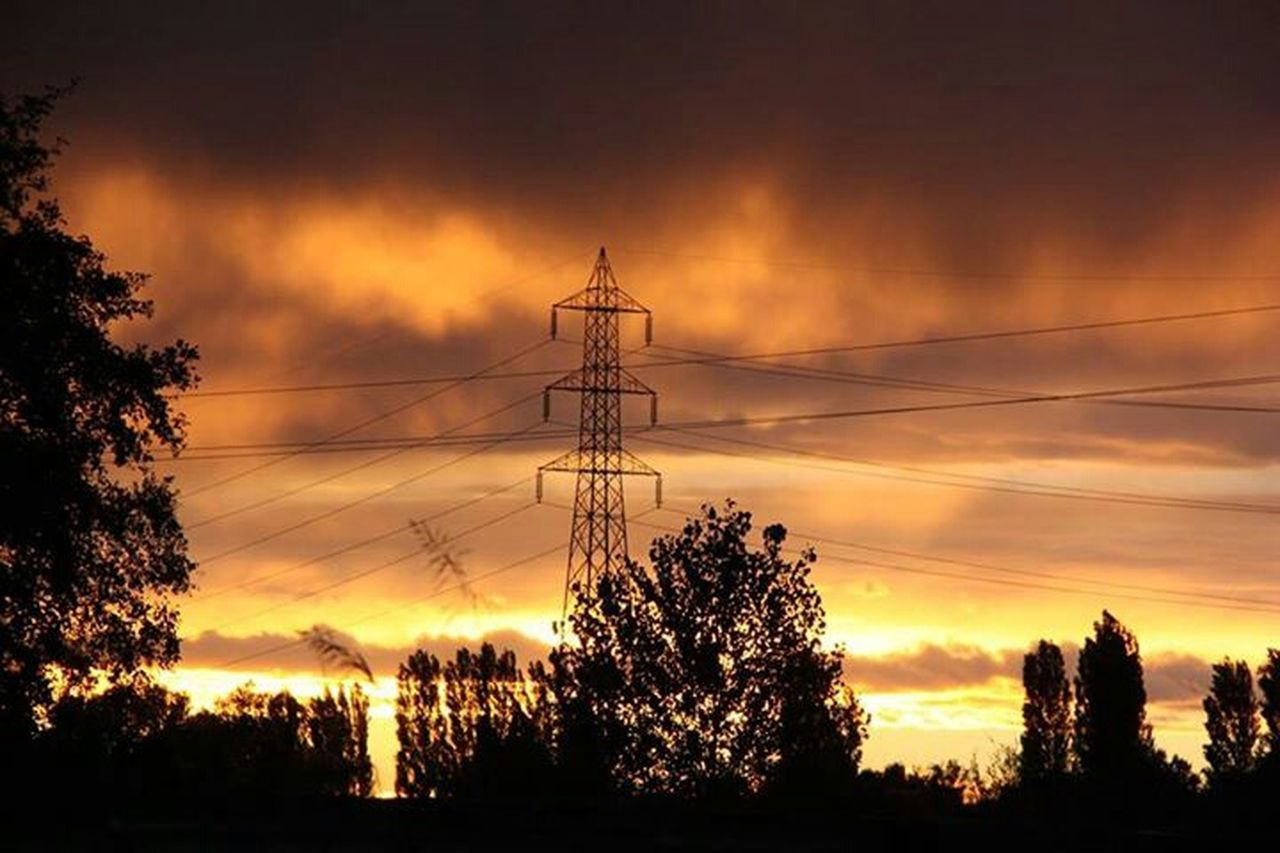 tree, silhouette, sunset, electricity pylon, electricity, fuel and power generation, sky, cloud - sky, cable, tranquility, no people, connection, power supply, power line, low angle view, scenics, beauty in nature, landscape, outdoors, nature, technology, day