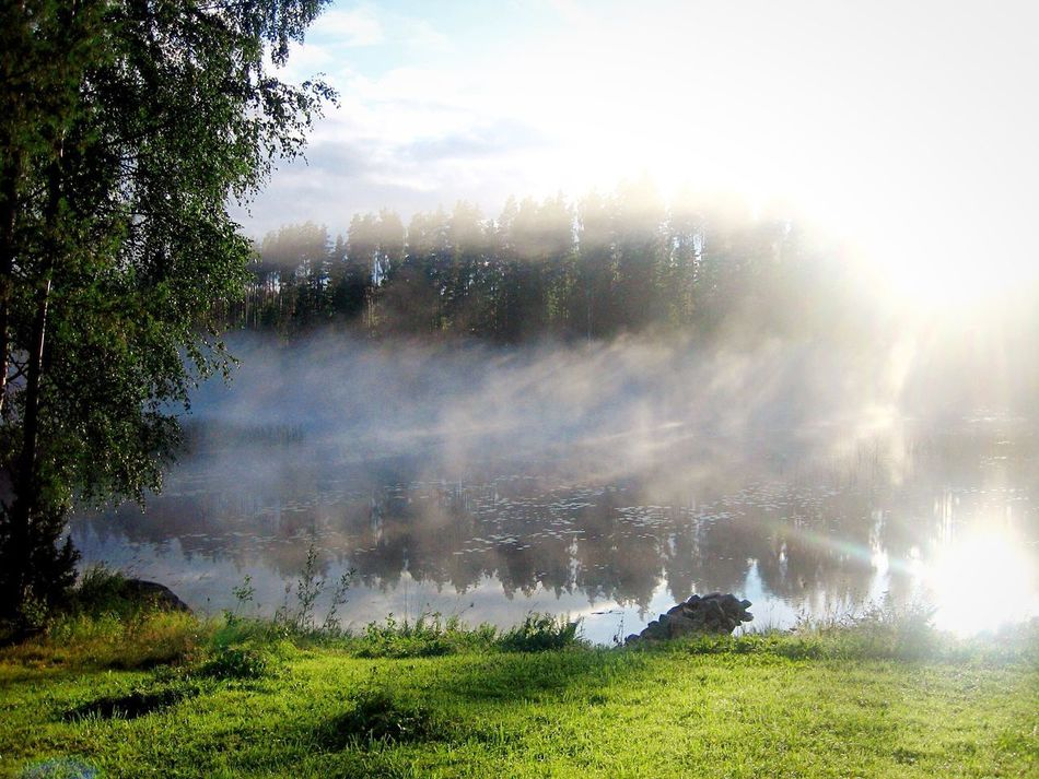 Morgennebel. Beauty In Nature Nature Tree Water Lake Landscape Landscape_Collection Landscapes Tranquility Scenics No People Tranquil Scene Mist Morning Foggy Morning Reflections In The Water Finland Finlandia Haze Magic Sunlight Quiet Places The Secret Spaces Quiet Moments Beautiful Nature