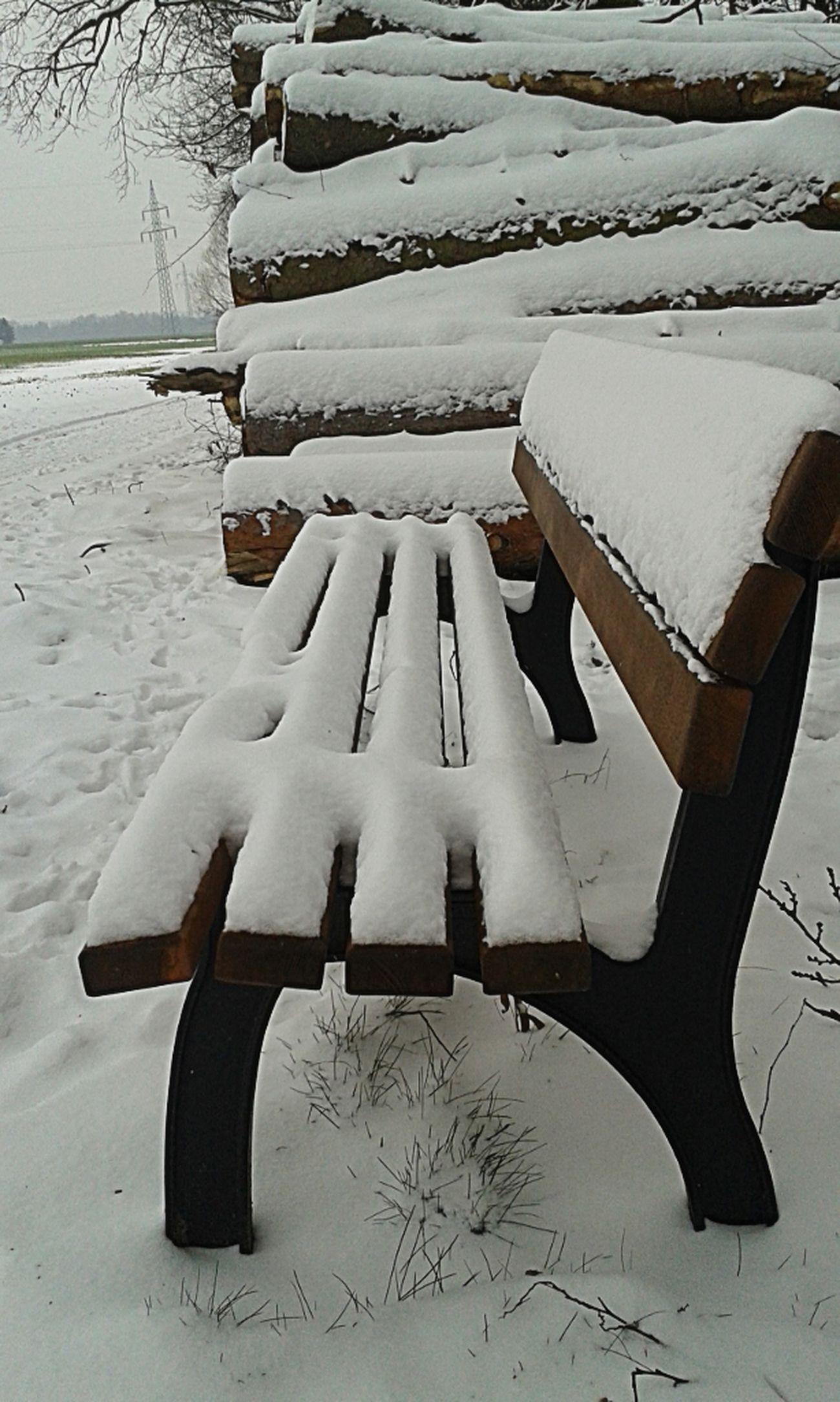Taking Photos Eye4photography  Winter Landscape Wintertime Snowbound Blench Snowwalking Dogwalk Taking Photos Snowcase:January