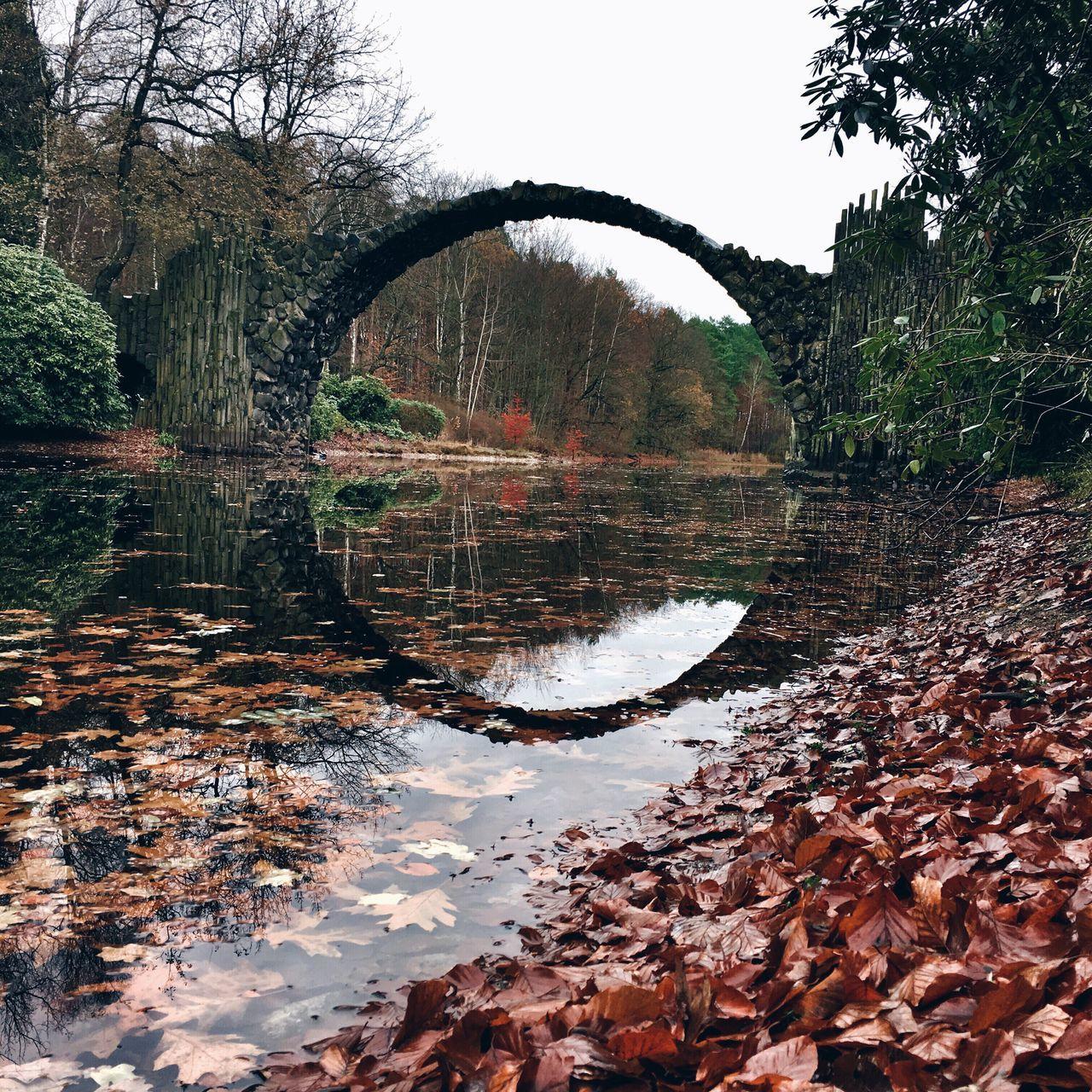 Rakotzbridge Rakotzbrücke Explore Saxony German Nature