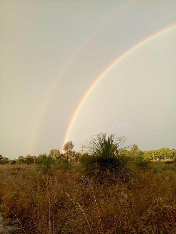 Early morning double rainbow swan valley region