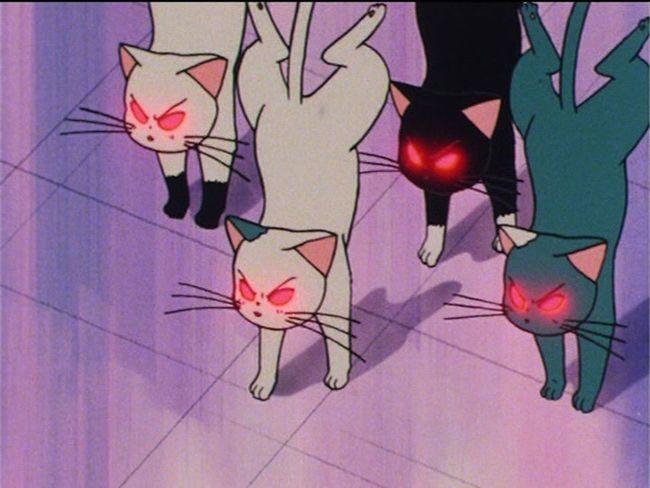 mood Sailor Moon First Eyeem Photo