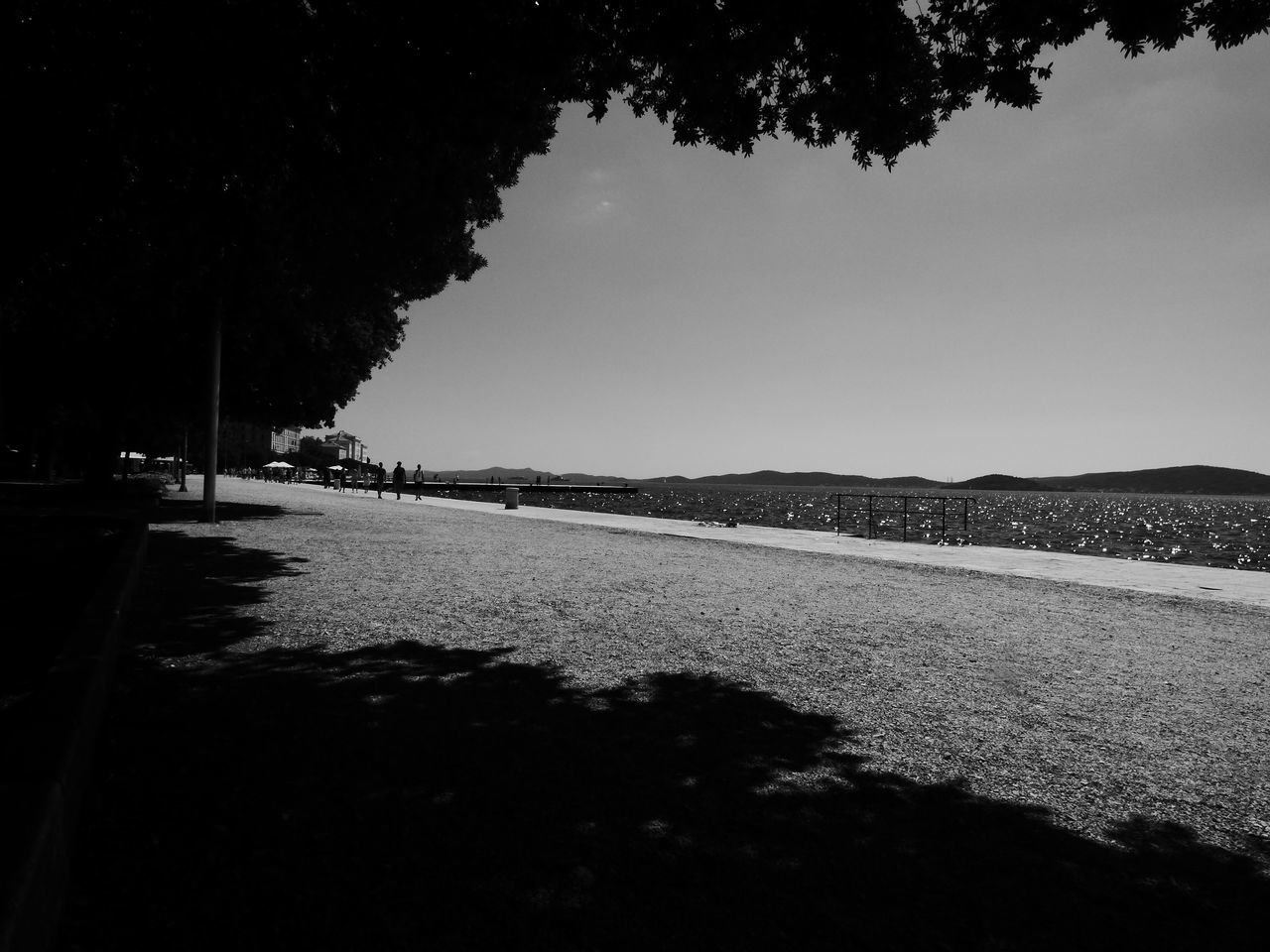 Adriatic Sea Beach Beauty In Nature Blackandwhite Blackandwhite Photography Clear Sky Coast Contrast Dalmatia Day Landscape Light And Shadow Nature No People Outdoors Sea Shadow Sky Sunset The Great Outdoors - 2017 EyeEm Awards The Way Forward Tranquil Scene Tranquility Tree Water