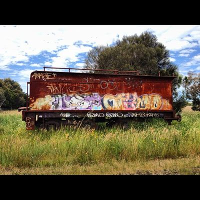 Oh the humanity! #rusty #train #carriage #graffiti #unloved #history #bellarine #myhometown #drysdale Graffiti Train History Rusty Unloved Carriage Myhometown Drysdale Bellarine