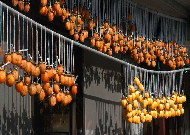 Autumn Food Fruit Hanging Out Japan Orange Color Persimmon