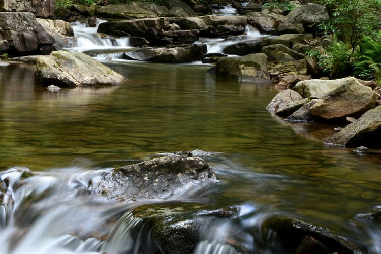 Rattling Creek, Lykens, PA Stream Creek Waterfall Slow Shutter Long Exposure EyeEm Best Shots - Nature Nature Nature On Your Doorstep The Great Outdoors - 2015 EyeEm Awards Malephotographerofthemonth
