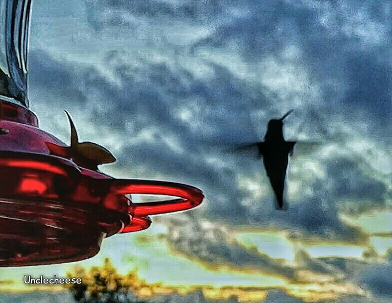 transportation, flying, no people, sky, low angle view, outdoors, day, airplane, animal themes, nature, close-up