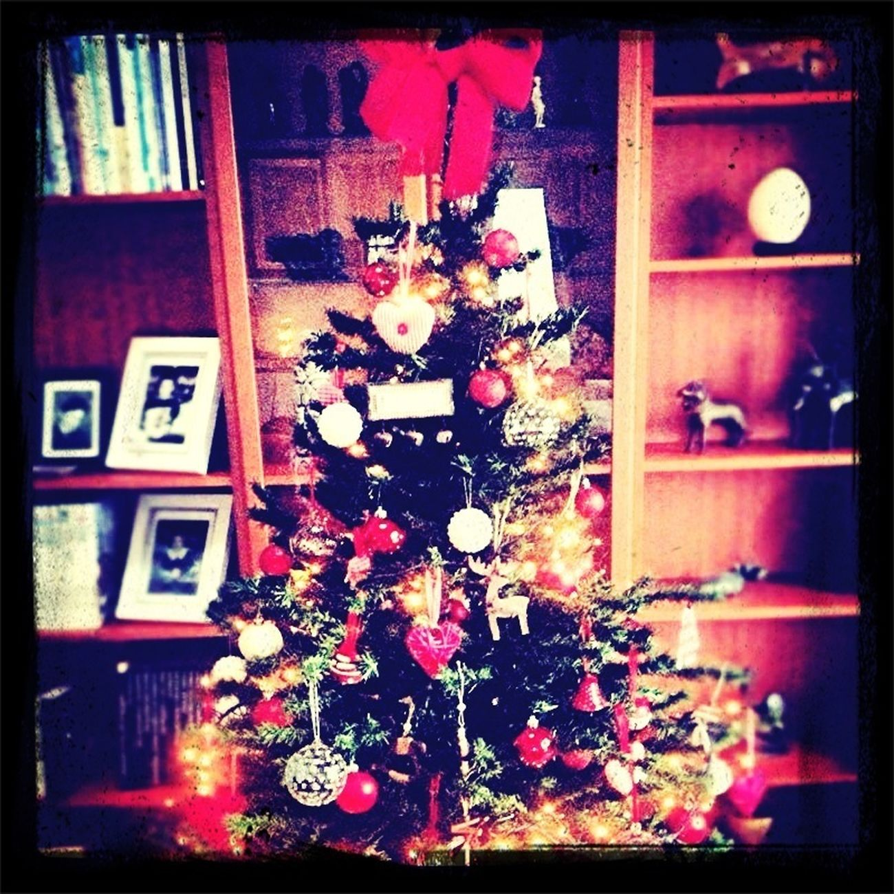 Poppy's Christmas Tree