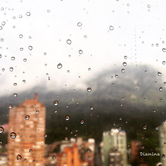 Momentos de lluvia, de contemplar y dejar que se vaya lo que necesita salir de mi vida! Momentos alegres😁👌🏼! Amo la lluvia 😍👏🏽😁 Rain Rainy Days Happy ILoveBogota I❤️Bogotá Gotas De Lluvia Contemplating Contemplando Amolavida Ilovetherain