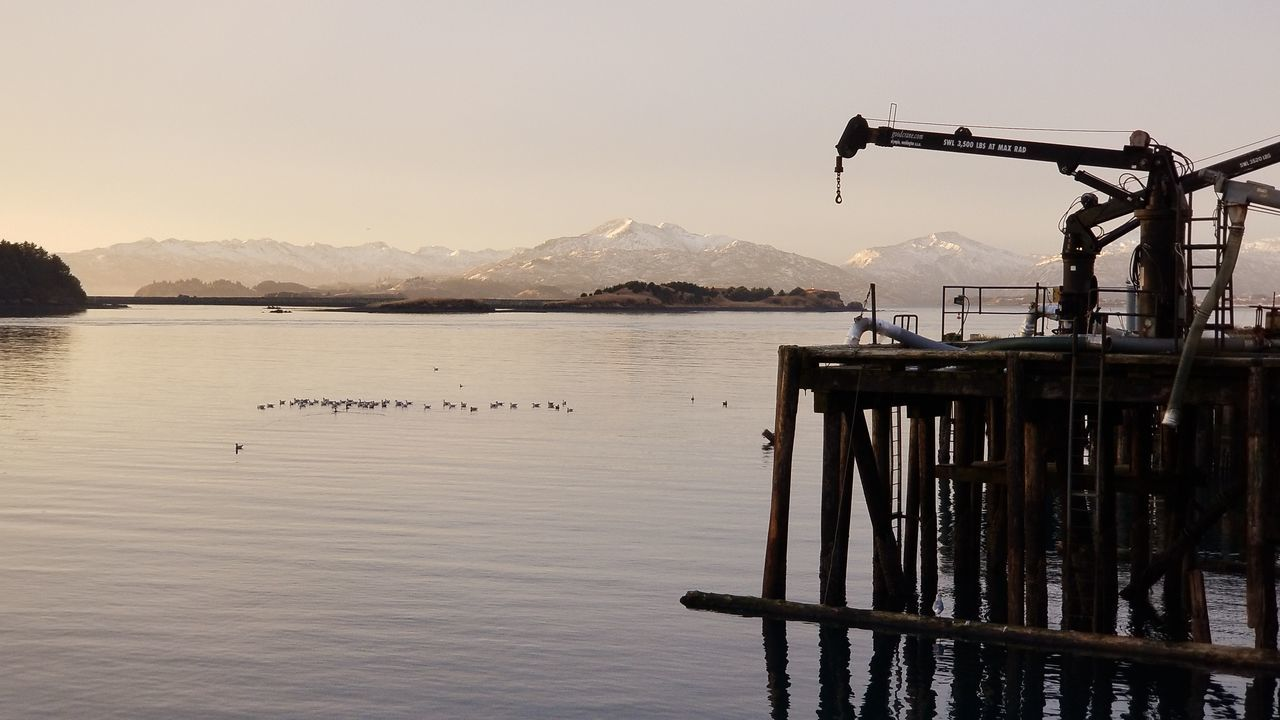 Mountain Water Sky Lake Sunset Clear Sky Outdoors Nature Day Cannery Commercial Dock Sun Landscape Reflection Sunlight Voyageur Country Imaging Kodiak Alaska Photography Winter Mountain Range Snow Cold Temperature Sea Bird