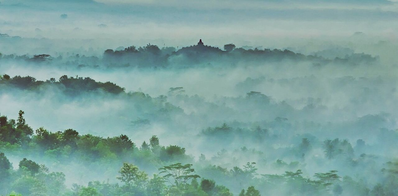 morning, nature, fog, landscape, spirituality, forest, tranquility, tree, mountain, outdoors, religion, travel, beauty in nature, sky, tropical climate, dawn, scenics, travel destinations, no people, ethereal, beauty, cold temperature, day