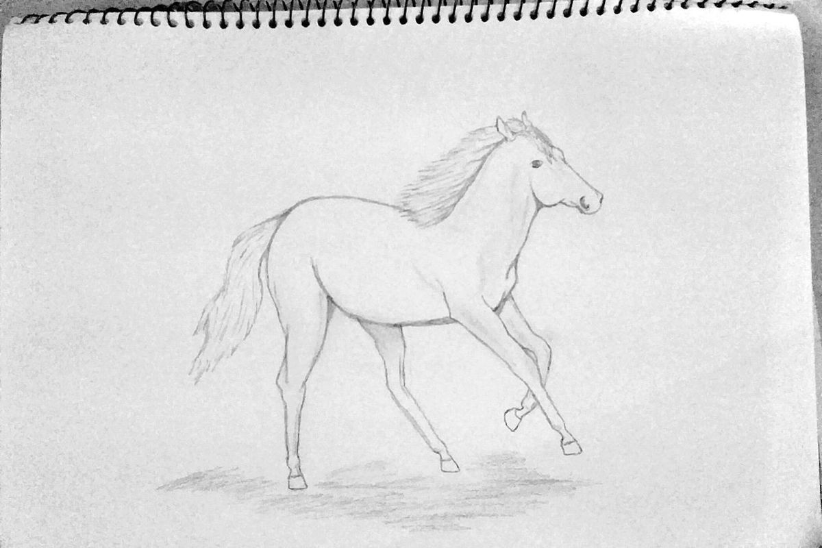 Dibujo A Lapiz Drawing Of The Day Paper Day Drawing ✏ Horse❤ EyeEmNewHere Visual Feast
