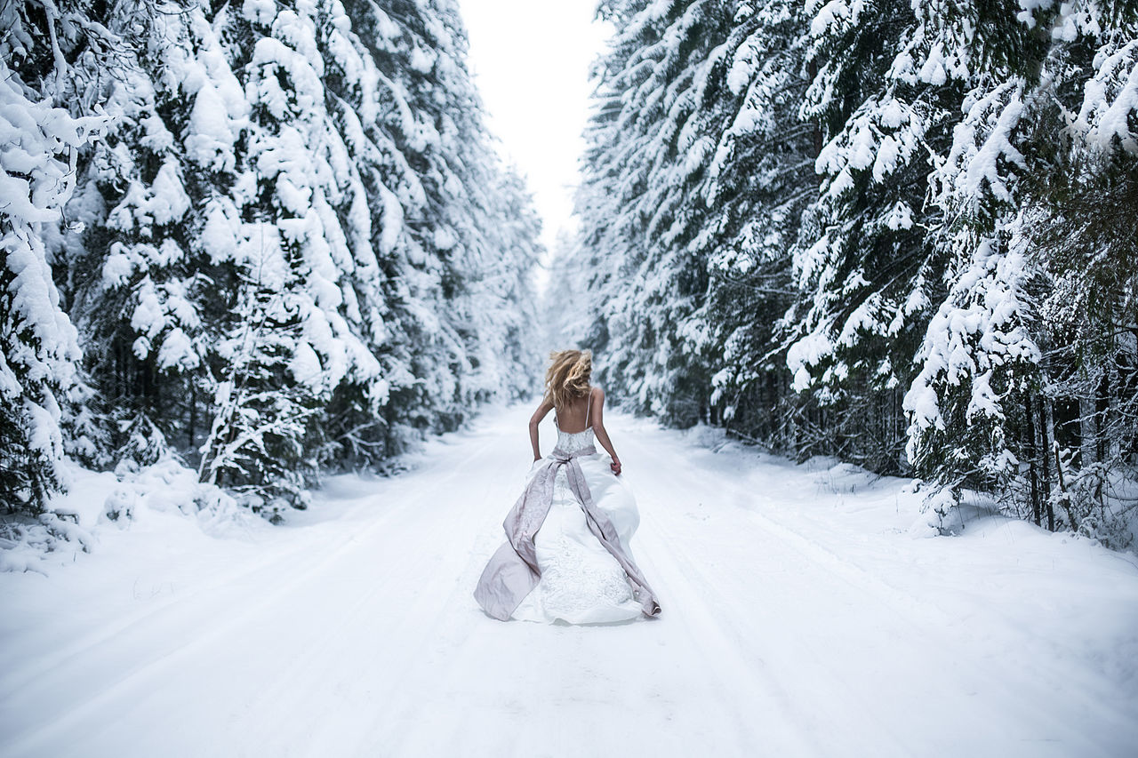 Beautiful stock photos of prinzessin, snow, winter, cold temperature, tree