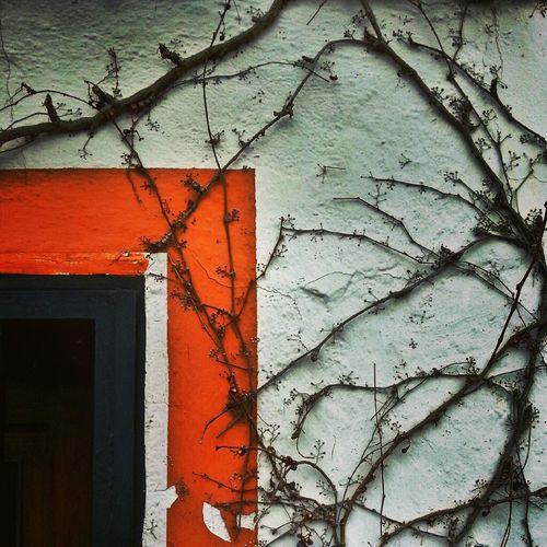 Relaxing Nature Nice Wall Corner Movilgrafias Divagando Enfocae