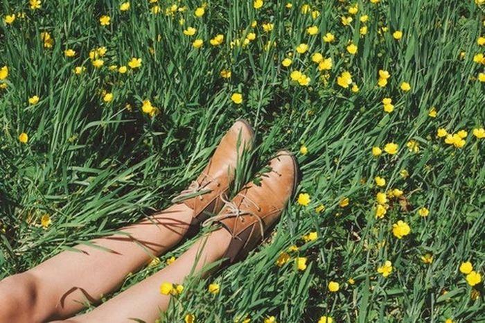Through the grass. Adventures Beyond The Ultraworld