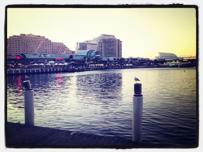 Dariling Harbour