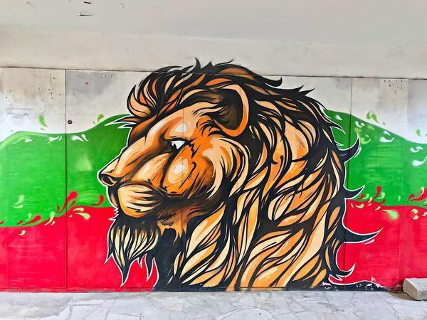 No People Grafitti Art Lion King Kapana, Plovdiv Tiger Colorful Multi Colored Animal Themes Underground Volltoll IPhone7Plus