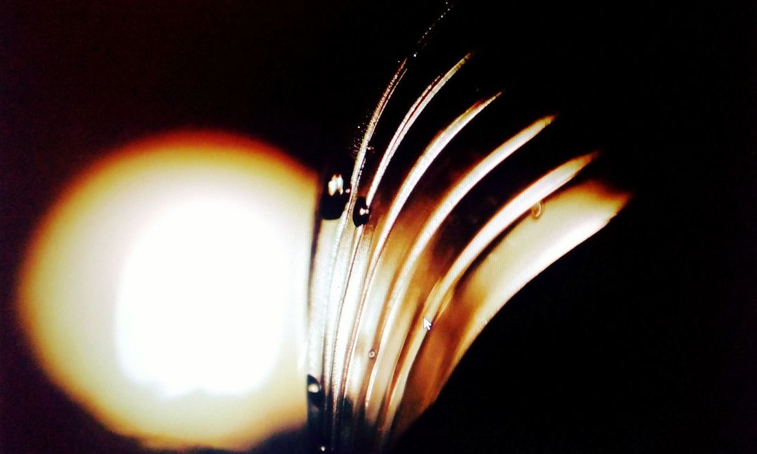 Scratch of life Water Water Reflections Water Surface Watercolour Bottle Art Bottle Cap Art Bottle Bottle Cap Bottle Of Water Light Painting Light And Dark Light And Shadows Light Effect Light Reflection light and reflection