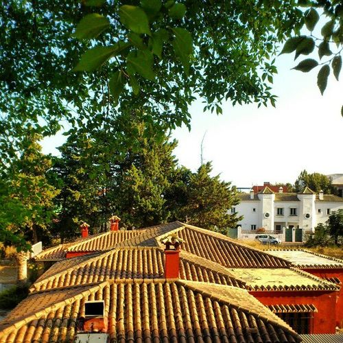 House Roof Near the Golden mile marbella spain