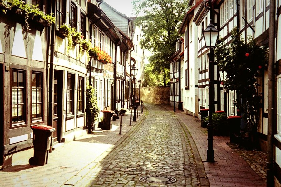 Down the lane... Hameln Historical Buildings Timber Framed Houses Wheely Bins Cobblestone Alley