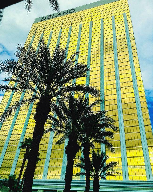 quicky 📷 Casino Vegas  Quick Shot LearningEveryday