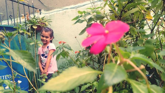 Exploring new ways to take a pictureGarden Plants Plants And Flowers Grandma's Garden CHILDS SMILE After Lunch