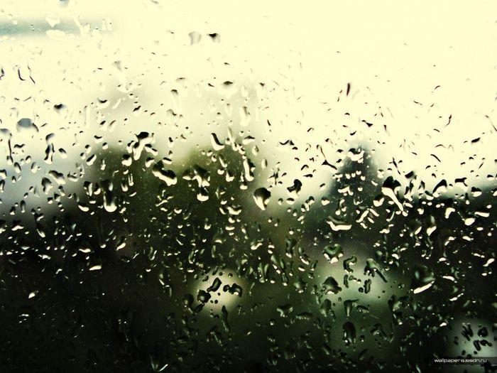 """Дождь звонкой пеленой наполнил небо, Майский дождь, Гром прогремел по крышам, Распугал всех кошек гром. Я открыл окно, и весёлый ветер Разметал всё на столе, Глупые стихи, что писал я В душной и унылой пустоте. Грянул майский гром, и веселье Бурною пьянящею волной Окатило, эй, вставай-ка И попрыгай вслед за мной. Выходи во двор и по лужам Бегай хоть до самого утра, Посмотри, как носится Смешная и святая детвора. ДДТ """"Дождь"""""""