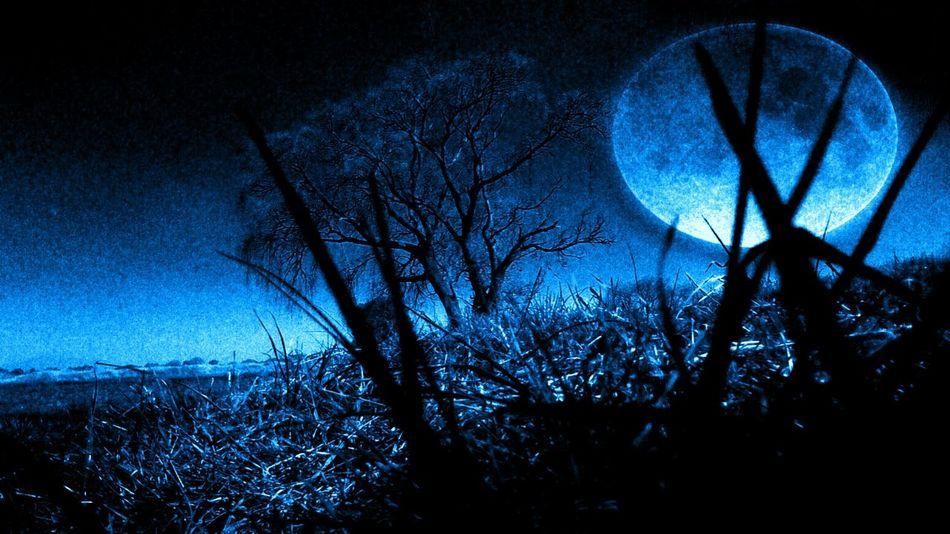 Noche Relaxing Relax Relajación Night Chill Chill Mode Smoking Time Tree árbol Luna Moonlight Edited By Me Luz De Luna Editados:( Aire Libre Mexico