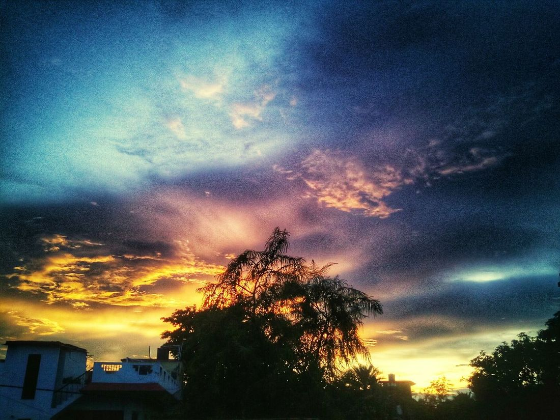 The last glimpse of sunset... 43 Golden Moments Skyandclouds  Sunset Burning Sky Treesilhouette Cloudart TheLast Glimspe Naturelovers Skyscapes Sky_collection Cloudlover Playing With Filters Dusk Colours Evening Sky Terrace