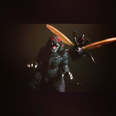 """Yah um hello?,hank yah It's Scott,I think this time we should really consider calling the avengers "" Marvellegends BANDAI Antman Scottlang Godzilla Antony Tcb_flyupandaway Manchild Mcu Figurelife Figures Collection Collector Kaiju Gojira Infiniteseries Antmanwave Theavengers Avengers Toysrmydrug Marvelentertainment Toys4life Toysrmydrug Ultronwave Nerd comics Disney hasbro actionfigurephotography actionfigures acba"