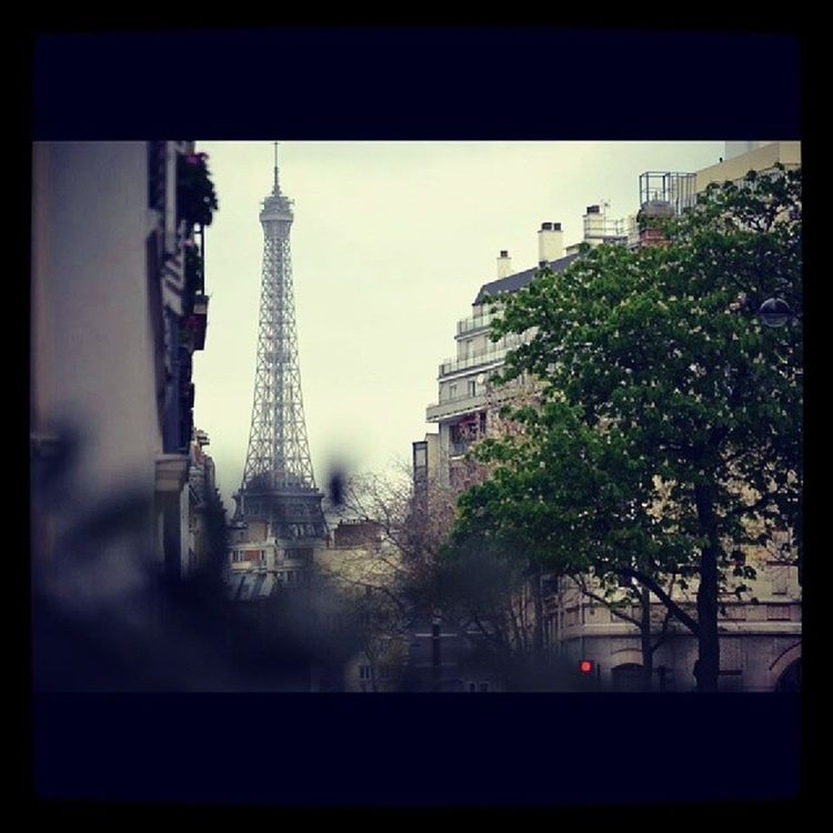 Ile_de_france France France Paris Paris_XVe Paris day daylight tree natural colorful colors street eiffel_tower tour_eiffel sky like like4like likeforlike photooftheday photo pic picoftheday bestoftheday beautiful