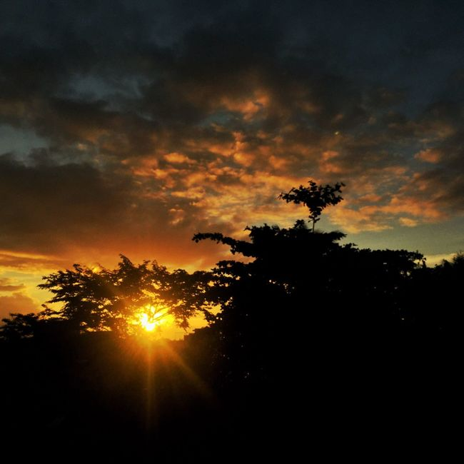 Sun is up !!! Hello World LLLimages Sunrise Sunrise_Collection Sunrise And Clouds Sunrise Silhouette Sun Light Relaxation Time Chill Mode Tranquil Scene Serenity New Day Rising New Day