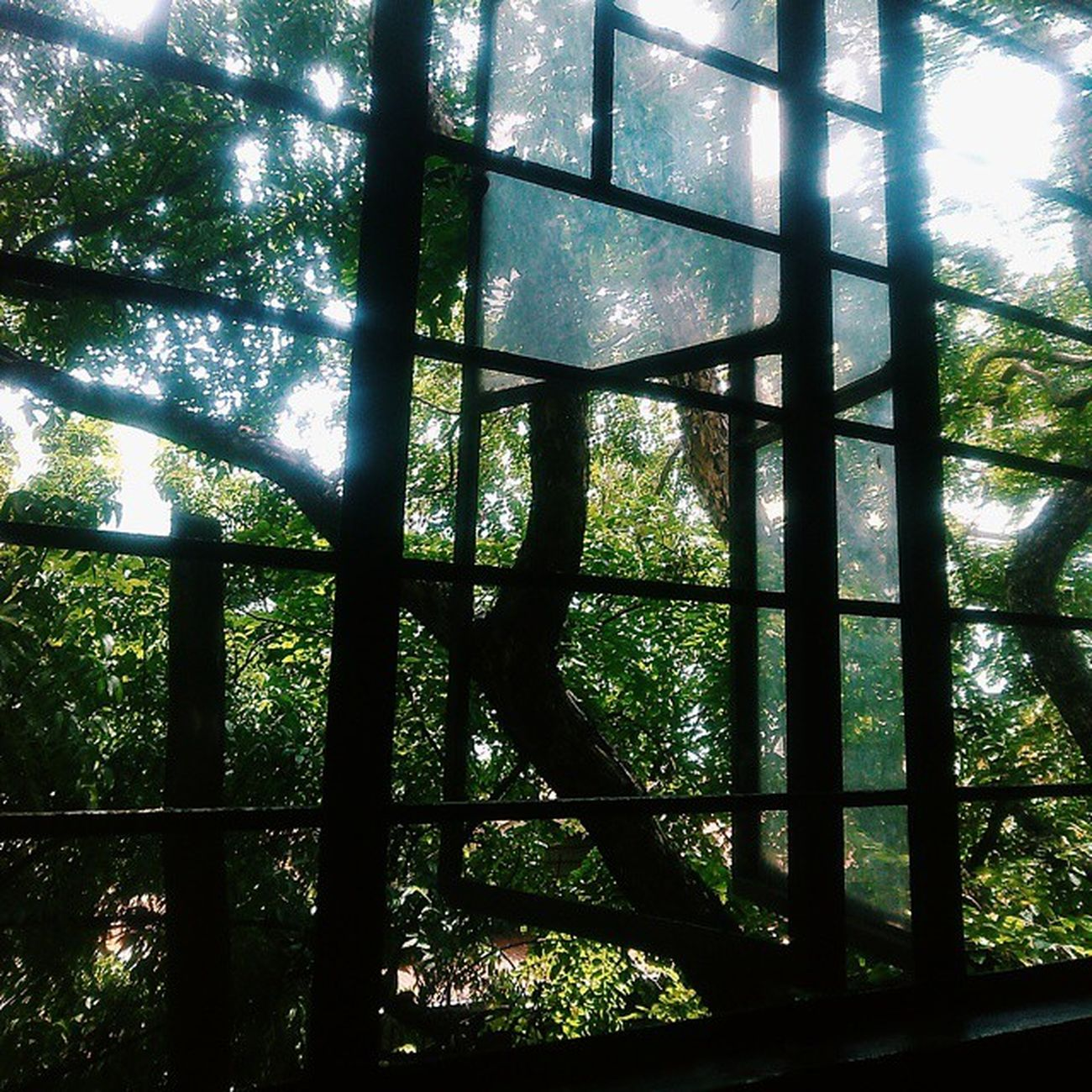 The ever horrible ACAD bldg ××××× Vscocam