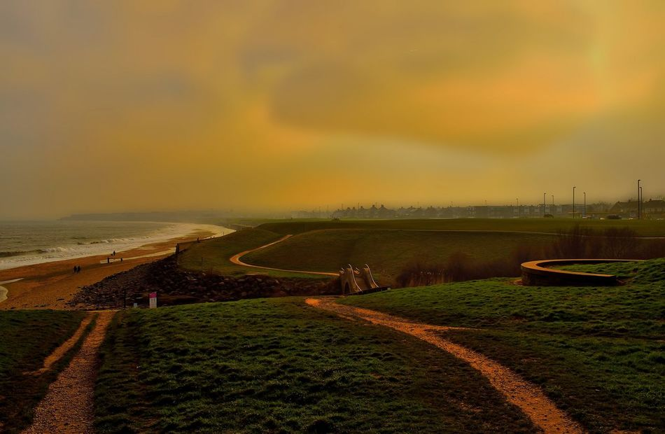 Agriculture Beauty In Nature Day England Growth Inghilterra Landscape Mare Nature Nikon Nikond3300 No People Outdoors Photo Photographer Photography Photooftheday Scenic Scenics Sea Sea And Sky Sea Life Sea View Seaside Sunset