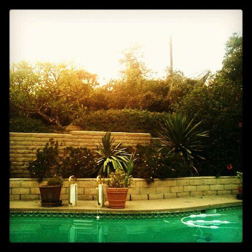 California Cali SoCal Sandiego San Diego San Diego Ca Fallbrook Fallbrook, CA