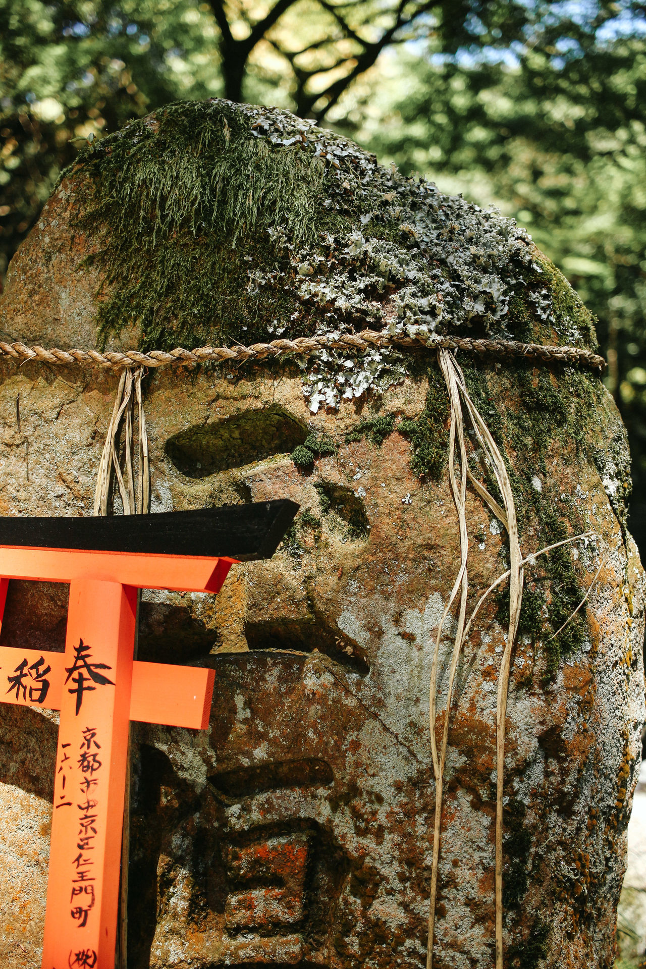 Fushimi Inari is not only about the gates <3 Day Green Japan Japan Photography Japanese  Kyoto Nature Nature Nature_collection No People Outdoors Temple Tradition Travel Travel Destinations Traveling Tree