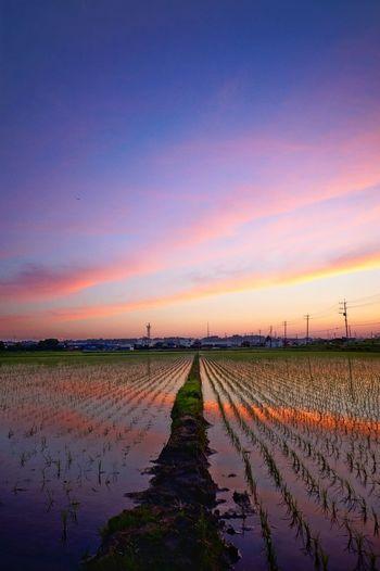 sunset #sun #clouds #skylovers #sky #nature #beautifulinnature #naturalbeauty photography landscape Colour Of Life