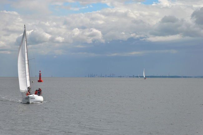 Sailing in Gdynia Freedom Gdynia Poland Regatta Sailboat Sailing Sailing Ship Sea Sky Sport Vacations Water
