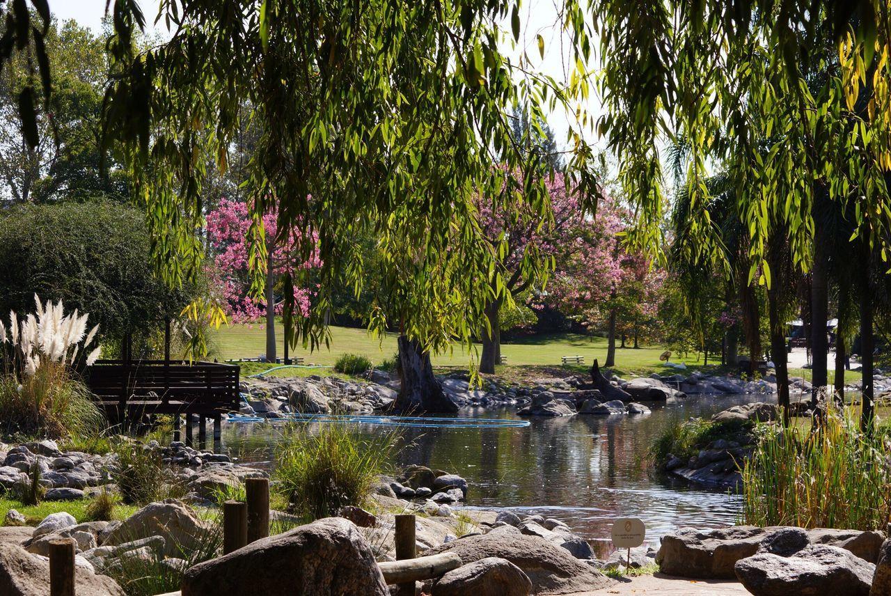 Garden of Temaiken - Argentina Garden Temaiken Garden Photography Argentina Argentina Photography
