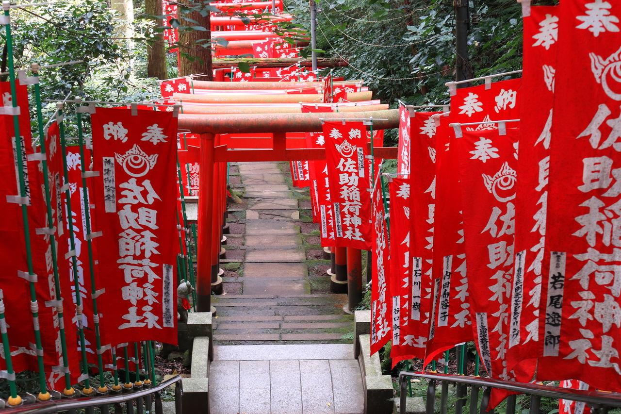 佐助稲荷 Inari Shrine Architecture Gate Inari Outdoors Place Of Worship Red Red Color Religion Road Approaching A Shrine Shrine Spirituality Steps