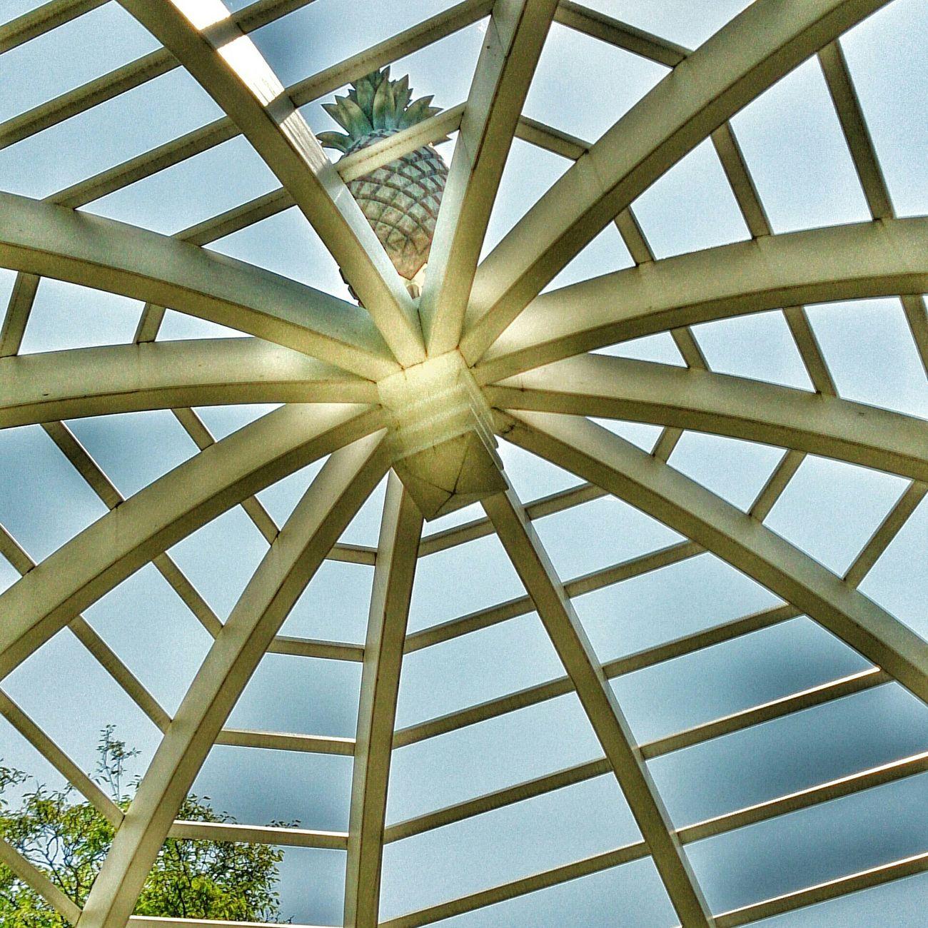 Ananas Pineapple Architecture Architektur Bogen Sunny Day Sonnig