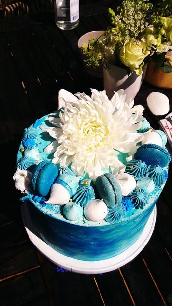 Cake Cake Time Cakelovers Cake Design Blue Cake Cake Flowers Macaroons Blue Marine EyeEm Best Shots EyeEm Selects Baby CakesThe Week On Eyem Party Cake Celebrate The Moment Celebrate The Springtime Flowers Blue And Green Sea Shells Merangue