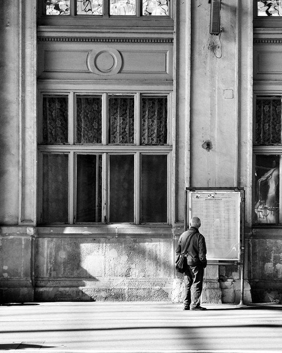 Budapest Hungary Nyugati Train Station Last Sun Autumn Old Man Style Art Mood Blackandwhite Shadow Bright Building Window Sunday Travel Tourist Bnwhungary Bnwhungary_44