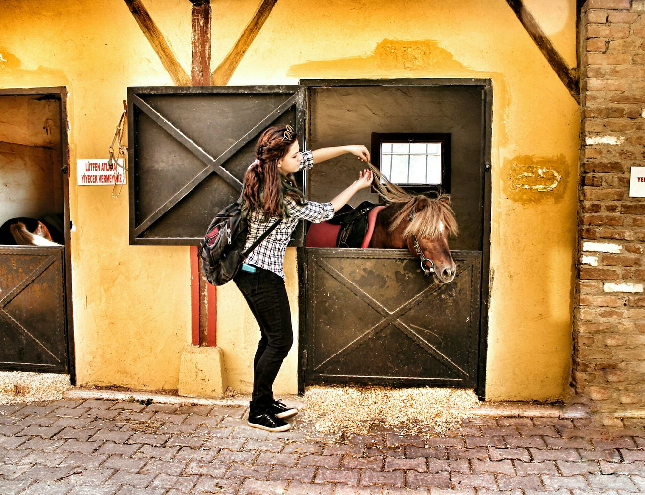 💋 My Best Photo 2015 Pony Good Times Nice Cute Life Goodday Like4like Canonphotography Tagsforlikes Happiness Me Photography Likeforlike Nice Photo Live Colors Aydin/Turkey