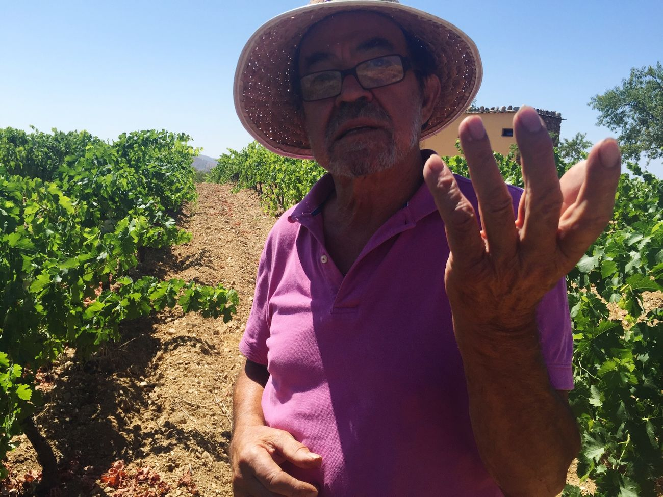 Unlikely Heroes Manuel, wine maker who has been producing natural wines in the mountains above Granada for the past 30 years. He has been advocating sensible approach to nature all his life, trying to stop the burning of the cork trees for fuel in the region among other things.