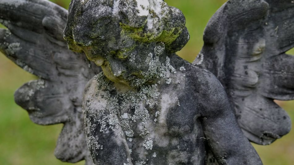 Beautiful Close-up My Angels Mythology No People Old Outdoors Statue