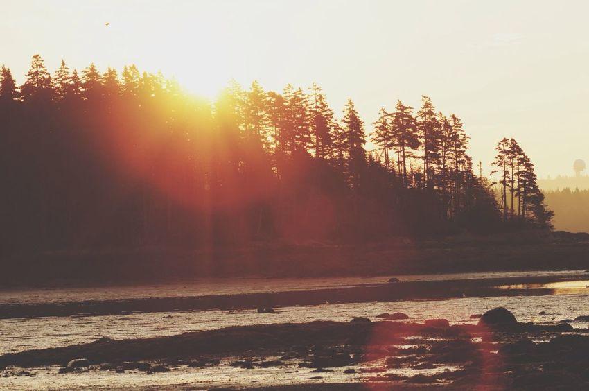 Sunset Maine Landscape Nature