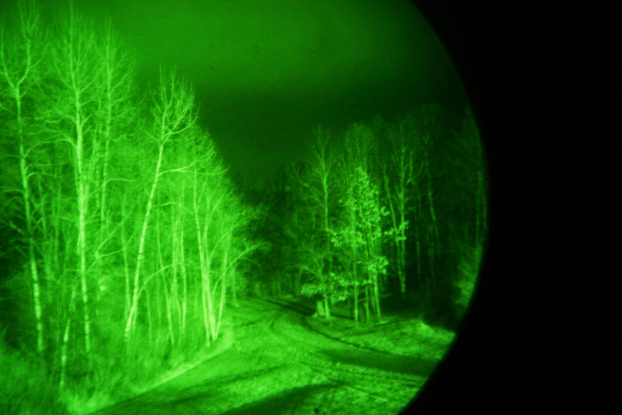 Driveway Night Vision Night Vision Goggles Nightime Nighttime Lights Tree