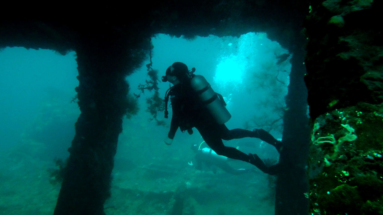 A man diving at the liberty shipwreck at tulamben, Bali Adventure Aquarium Blue Day Discovery Exploration INDONESIA Leisure Activity Lifestyles Nature Scuba Diving Scuba Diving Swimming Tulamben UnderSea Underwater Water