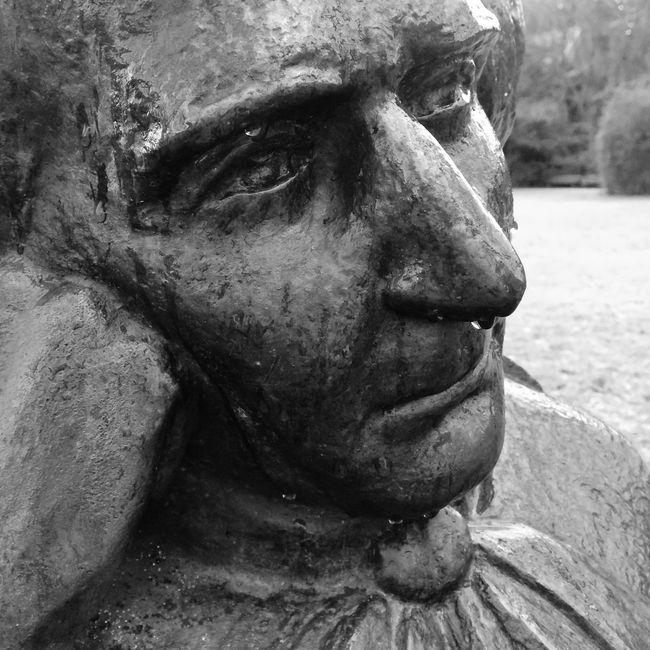 Hector Berlioz with runny nose Hector Berlioz Baden-Baden Eye4black&white  Blackandwhite Photography
